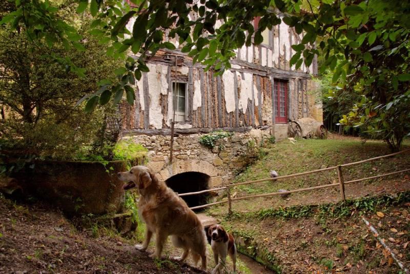 BERGERAC - Moulin Blanc